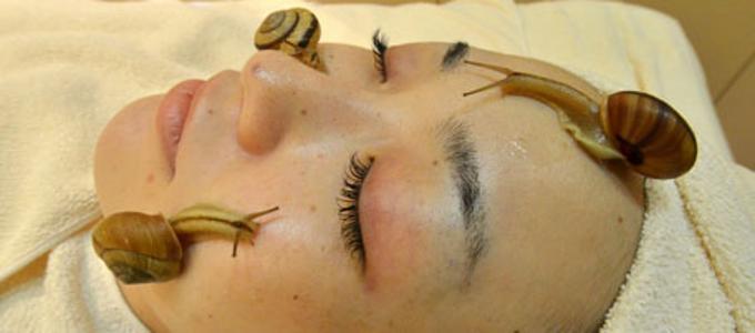 massaggio lumache